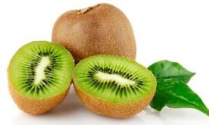 Kiwi Fruit Powder,kiwi extract ,organic fruit powder,freeze dried fruit powder suppliers