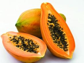 Papaya Fruit Powder,organic green papaya powder,papaya enzyme