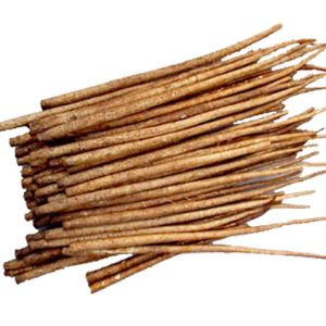 Burdock Powder burdock root tea burdock root powder burdock oil burdock herb organic burdock root