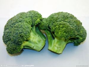 Broccoli Powder organic broccoli sprout powder broccoli sprouts broccoli extract