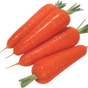 Red Carrot Powder organic carrot powder carrot seed oil dried carrot powder