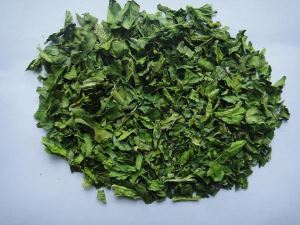 Spinach Powder spinach extract powder organic spinach powder powdered spinach extract