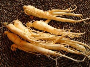Ginseng Extract, ginseng, panax ginseng, ginseng benefits, red ginseng benefits