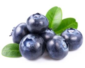Blueberry Extract wild blueberry powder blueberry supplement organic blueberry powder