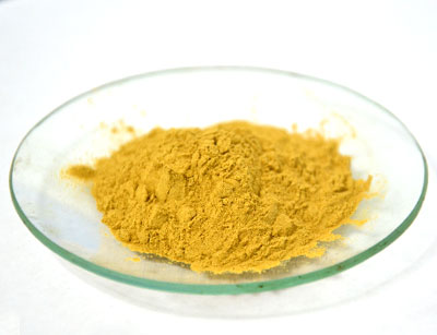 rosemary powder3.jpg
