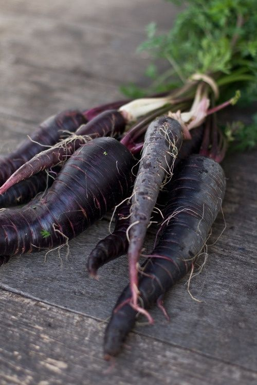 Black Carrot Extract,where Can I Buy Purple Carrots,black Carrot Seeds,organic Black Carrot